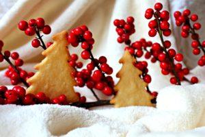 Christmas Tree Cookie Photo