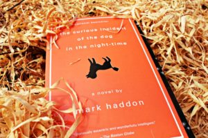 The Curious Incident of the Dog in the Night TIme Picture