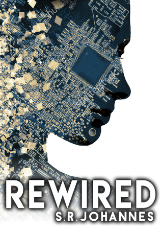 book review ReWired by S R Johannes