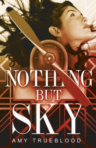 book review nothing but sky by amy trueblood